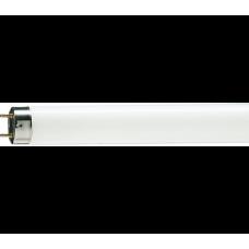 Лампа люминесцентная TL-D 30W/54-765